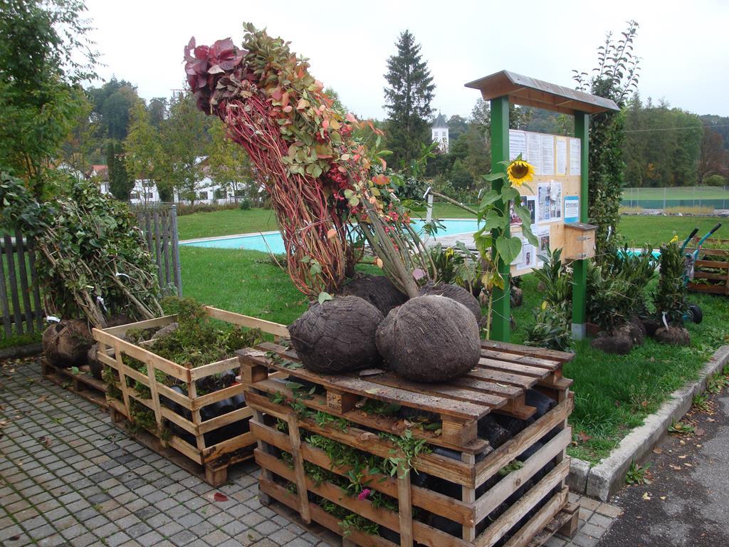 Bäume Sträucher und Pflanzen von Fielmann 2015